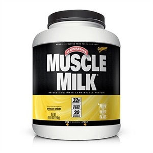 Muscle gainer buy online 2014
