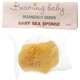 Beaming Baby Org Baby Sea Sponge 1large